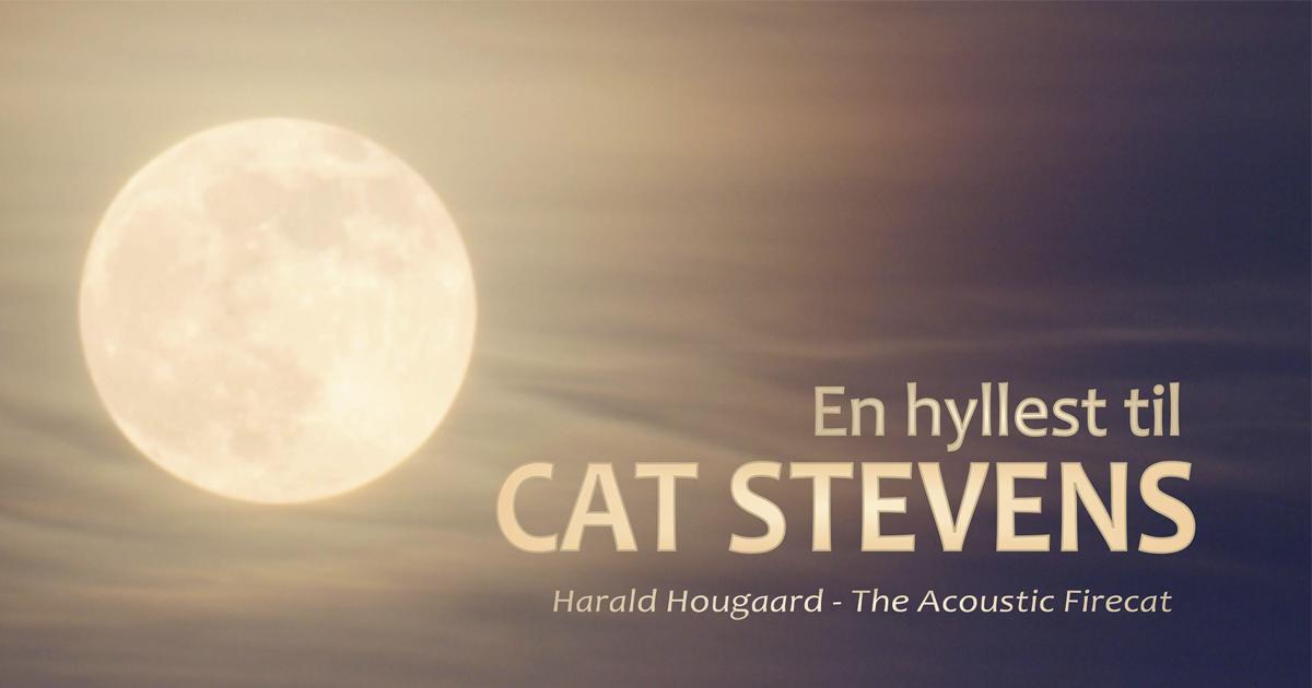 En hyllest til Cat Stevens